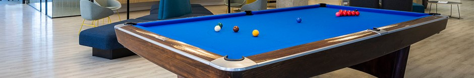 Wildeboer Dellelce Pool Table